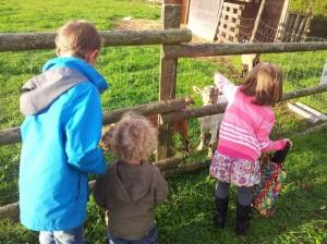 vacances à la ferme