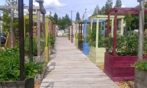 Le jardin de Simone